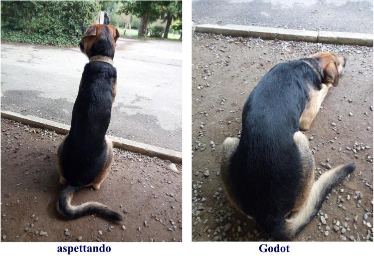 aspettando Godot